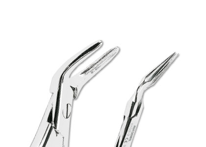 Root Splinter Forceps